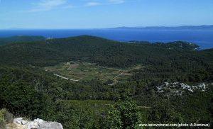 Views over fields on Lastovo island